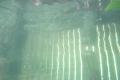600x-20080531-dpscistilnaakcijabled0039_2213