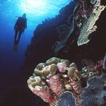 2005 Scuba Diving Magazine