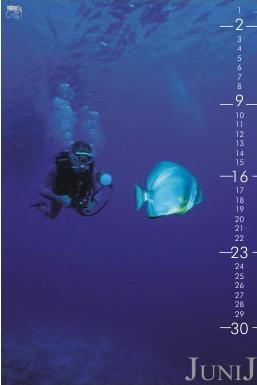 koledar2003-06_811