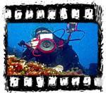 Zaključeno DP v podvodni fotografiji