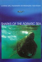 20050116lipej-sharksinadriatic001_842