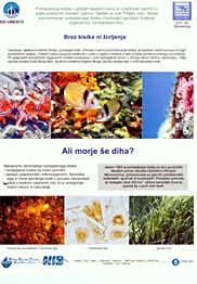 20080302mbptablica5001_2130